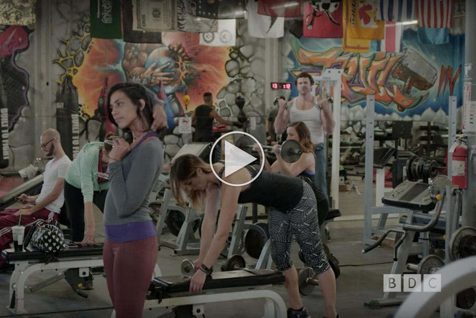 Gym-Wildlife_1