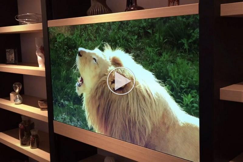 Panasonic-usynligt-TV_1