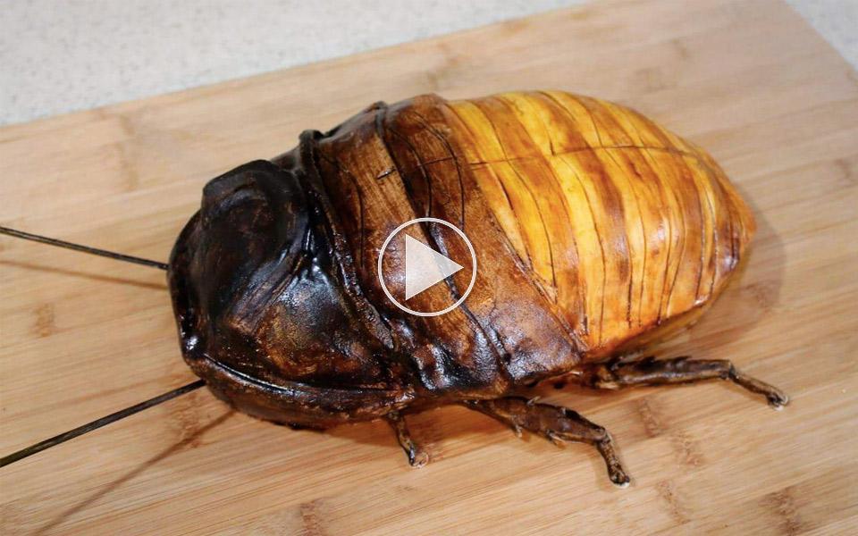 Den-her-kakerlak-vil-du-gerne-spise_1