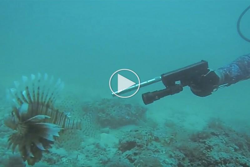 Kan-man-fiske-med-en-Glock-pistol_1