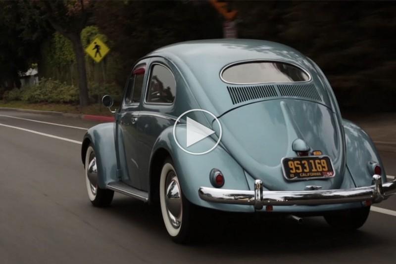 The-Bug-Movie_1