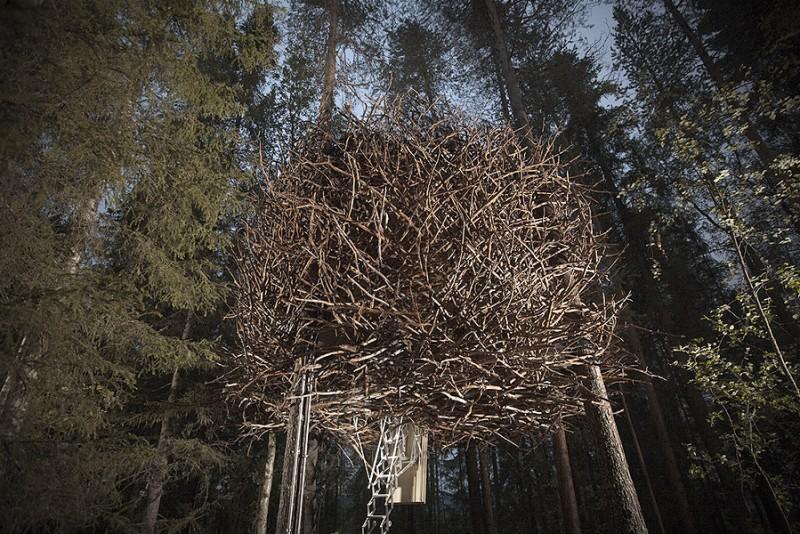 Treehotel-Birds-Nest_4