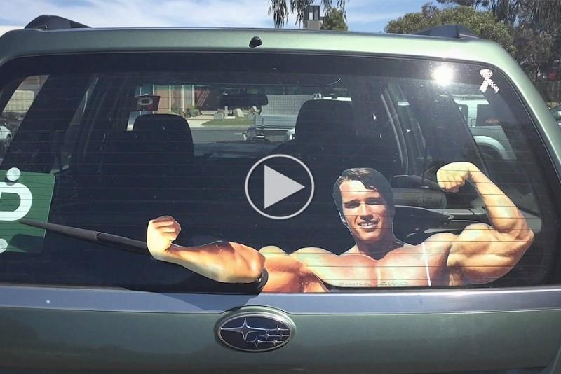 Arnold-Schwarzenegger-Vinduesvisker_1