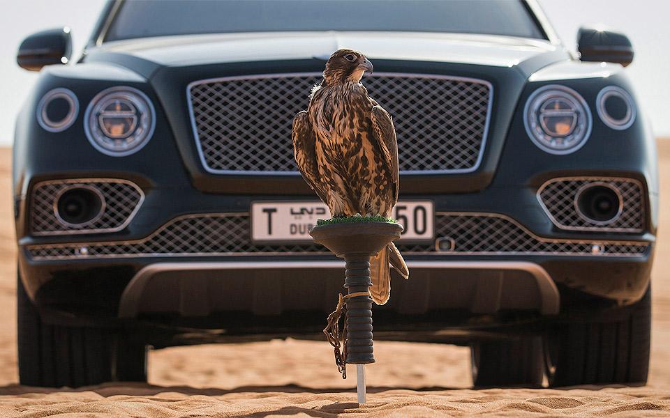 Bentley-Bentayga-Falconry-by-Mulliner_6