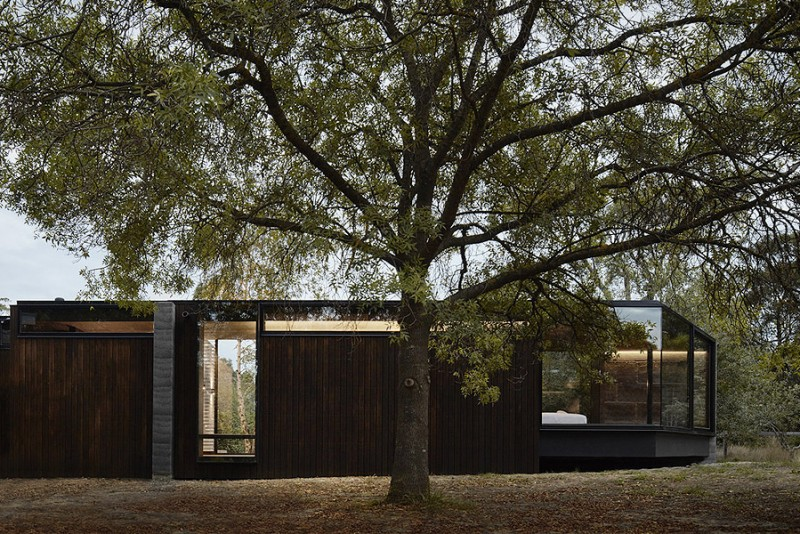 Branch-Studio-Architects-A-Pavilion-Between-Trees_5