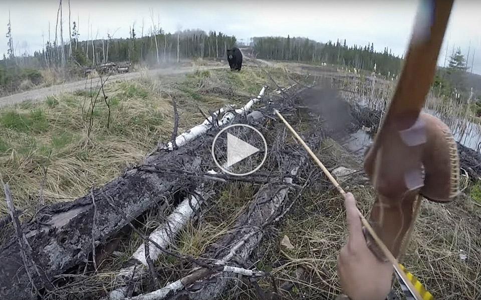 Mand bliver overfaldet af bjørn, men tager det i stiv arm