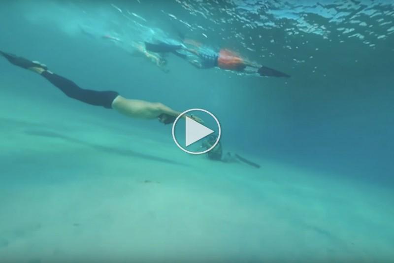 Verdens-langste-dyk-pa-et-andedrag-er-imponerende-langt_1